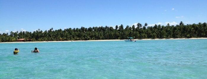 Praia de Peroba is one of Nordeste de Brasil - 2.