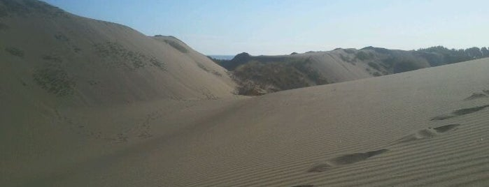 Dunas Ritoque is one of Lugares.