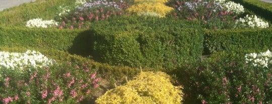 Le Jardin de l'Orangerie is one of Ryan : понравившиеся места.