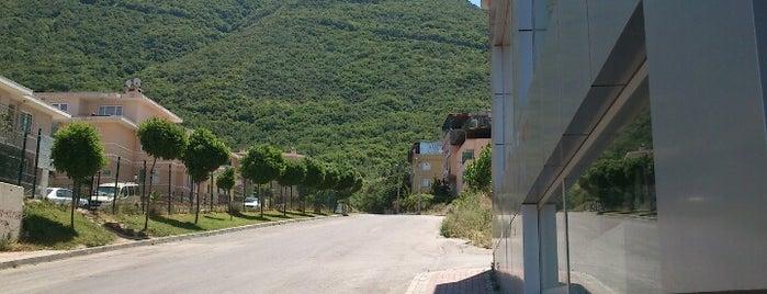 Kurtbasan Caddesi is one of Yunus'un Beğendiği Mekanlar.