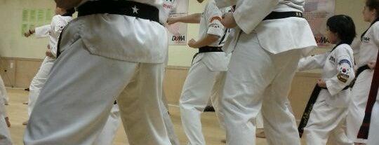 Doma Taekwondo is one of Orte, die Sung Han gefallen.
