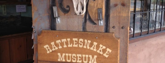 The Rattlesnake Museum is one of Arts / Music / Science / History venues.