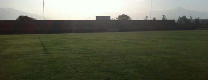 Estadio Municipal de La Pintana is one of Tempat yang Disukai Ignacio.