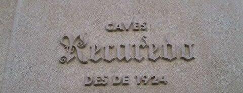 Caves Recaredo is one of Барселона.