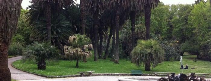 Orto Botanico is one of 101 cose da fare a Roma almeno 1 volta nella vita.