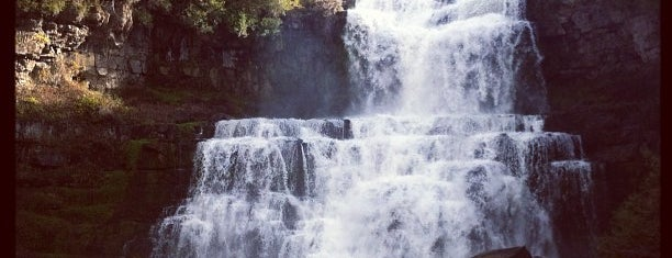 Chittenango Falls State Park is one of So, You're Stuck In Syracuse..