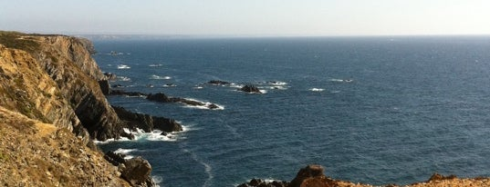Farol do Cabo Sardão is one of Faros.