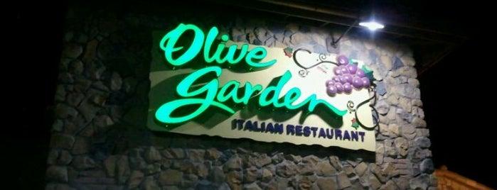 Olive Garden is one of Jon : понравившиеся места.