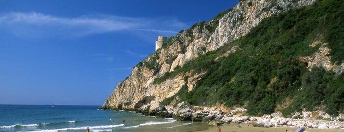 Monte Circeo is one of Viaggiatoriさんの保存済みスポット.