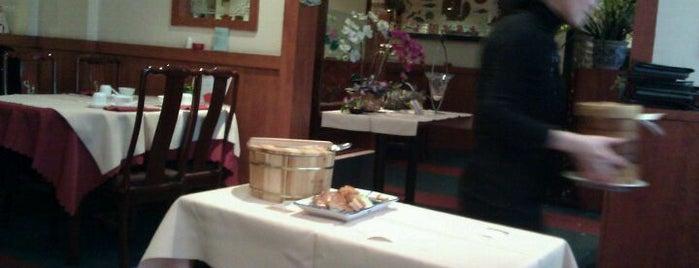 Oriental Delight is one of สถานที่ที่บันทึกไว้ของ Rafaëla.