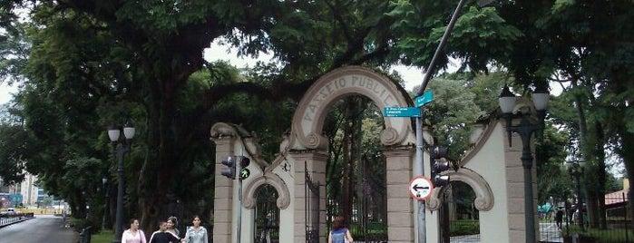 Passeio Público is one of Praças de Curitiba.