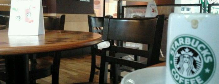 Starbucks is one of Dicas Caraigá.