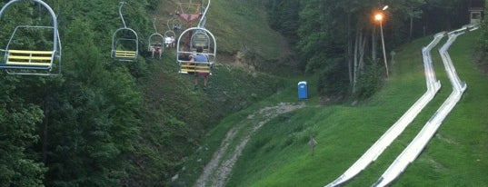 Alpine Slide is one of Debi 님이 좋아한 장소.