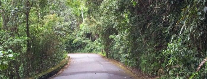 Parque Nacional da Tijuca is one of Desafio dos 101.
