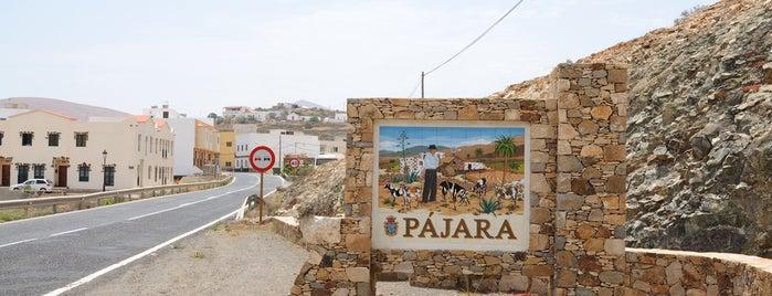 Pájara is one of Urlaub mit dem Mietwagen: Fuerteventura.