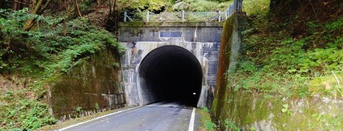笹ヶ峰隧道 is one of 四国の酷道・険道・死道・淋道・窮道.