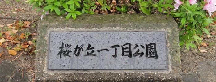 桜が丘一丁目公園 is one of Lugares favoritos de Shigeo.