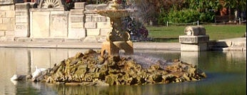 Tower Grove Park is one of Local venues to visit.