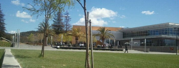 Napa Valley College is one of My favoite places in USA.