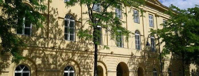Universität für Musik und darstellende Kunst Wien (mdw) is one of Locais curtidos por Berker.