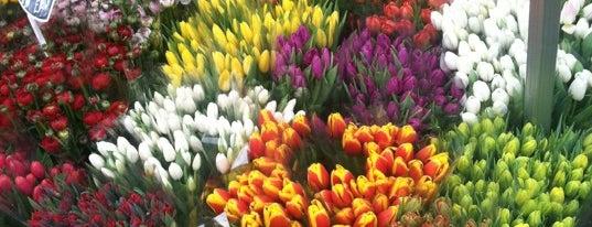 Columbia Road Flower Market is one of London's best markets.