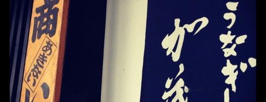 炭焼うなぎ 加茂 is one of Japan.