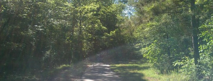Black Creek Greenway is one of Trudy's list.
