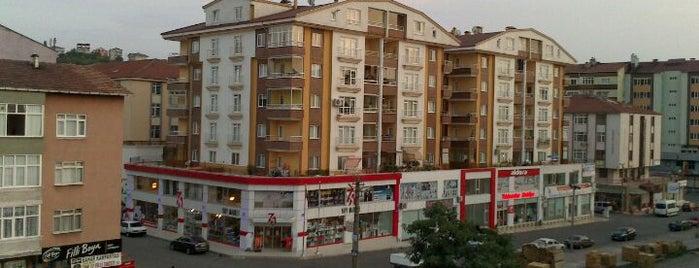 Ereylin is one of Zonguldak.