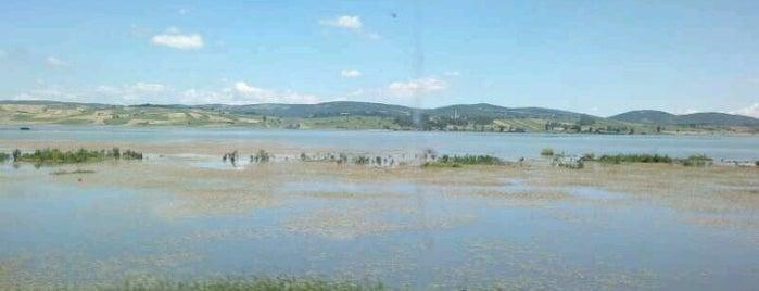 Ladik Gölü is one of SAMSUN.