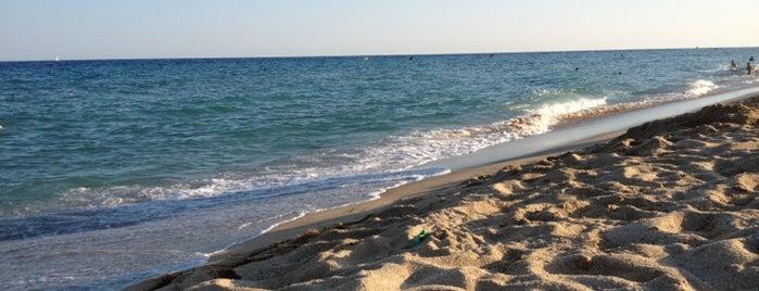 Platja de Cabrera de Mar is one of Playas de España: Cataluña.