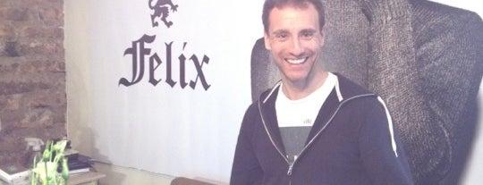 Felix is one of barrioitalia.tvさんの保存済みスポット.