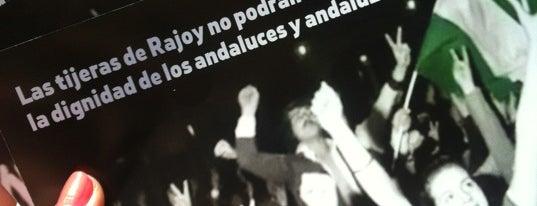 PSOE de Málaga'nın Beğendiği Mekanlar