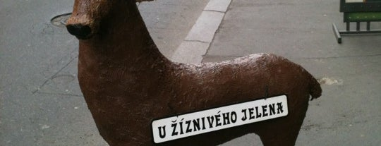 U Žíznivého jelena is one of Tatiana'nın Beğendiği Mekanlar.
