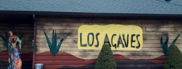 Los Agaves is one of Lieux sauvegardés par Mike.