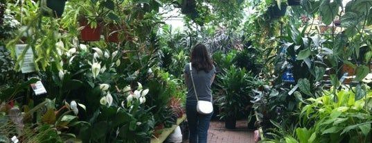 Gethsemane Garden Center is one of Fun places to go.