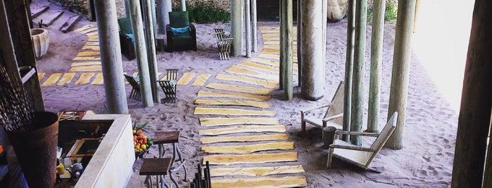 Kaamo Restaurant - Winebar & Lounge is one of Minha experiência gastrônomica III.