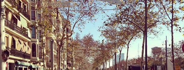 Passeig de Joan de Borbó is one of Orte, die MERITXELL gefallen.