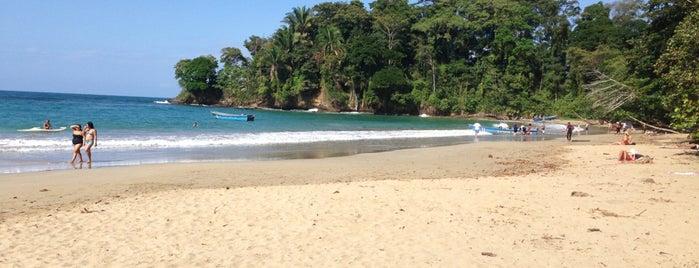 Punta Uva is one of Locais curtidos por Sunjay.