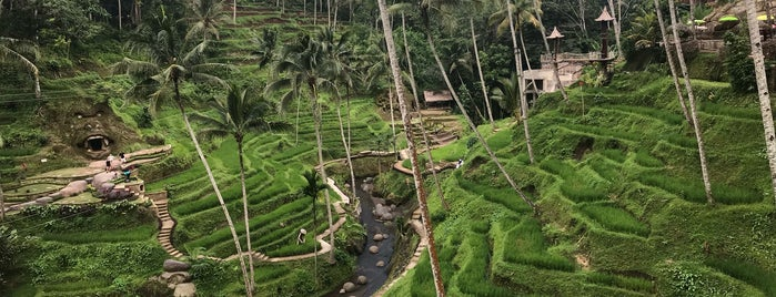 Tegallalang Rice Terrace is one of Ubud.