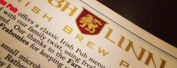 Dubh Linn Brew Pub is one of Minnesota Breweries and Brewpubs.
