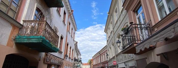 Savičiaus Špunka is one of Vilnius.