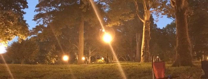 Highland Park is one of Orte, die Tatiana gefallen.