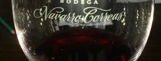 Bodega Navarro Correas is one of Experience Mendoza.