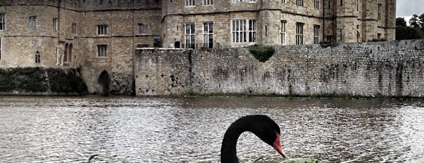 Leeds Castle is one of Lugares favoritos de Carl.
