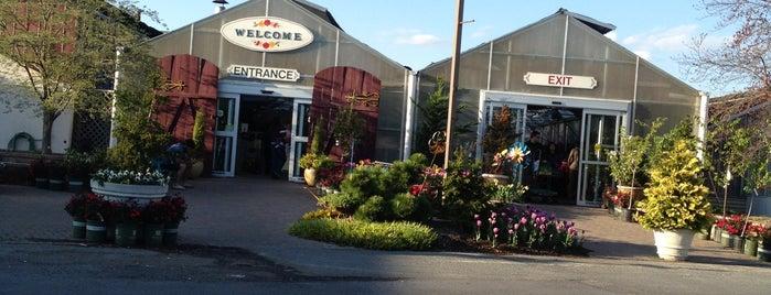 Behnke Nurseries Company is one of Tempat yang Disukai Paul.