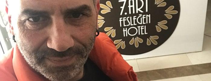 7. Art Fesleğen Hotel is one of สถานที่ที่ Umut ถูกใจ.
