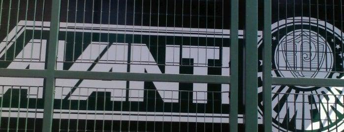Sede Avanti Palmeiras is one of SP.