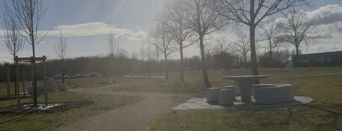 Aire de Troyes-le Plessis is one of Lieux qui ont plu à Mickael.