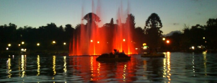 Lago is one of Rosario.