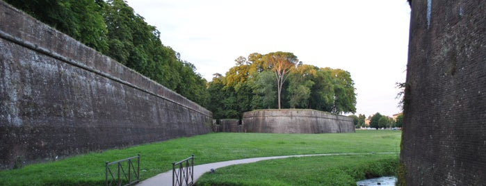 Le Mura di Lucca is one of Italy To-Do List.